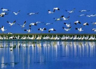 中国五大淡水湖
